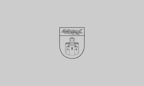 Obrazac za izradu izvješća o provedbi Plana gospodarenja otpadom jedinica lokalne samouprave