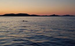 """PRIZEFISH """"Upravljanje eko-inovativnim lancima opskrbe u ribarstvu, kako bi se postigla dodana vrijednost jadranskih ribljih proizvoda"""""""