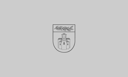 Odluka kojom se odgađa donošenje Odluke o odobravanju potpora za programe/projekte udruga u okviru raspoloživih sredstava Proračuna Zadarske županije za 2020. godinu na poziciji Upravnog  odjela za prostorno uređenje, zaštitu okoliša i komunalne posl